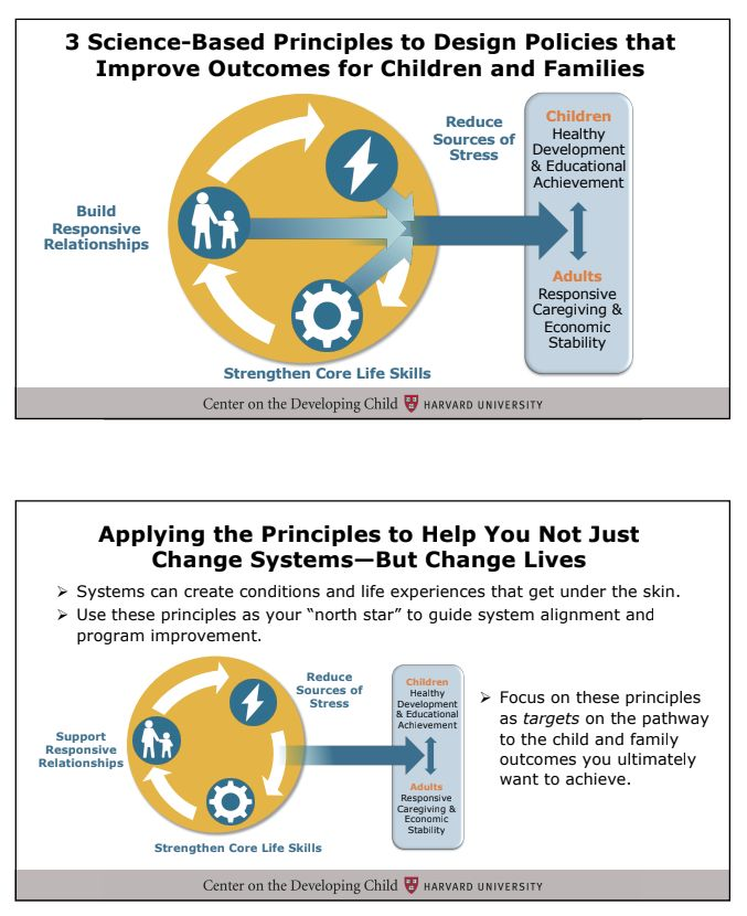 3 Science-Based Principles to Design Policies that Improve Outcomes for Children and Families