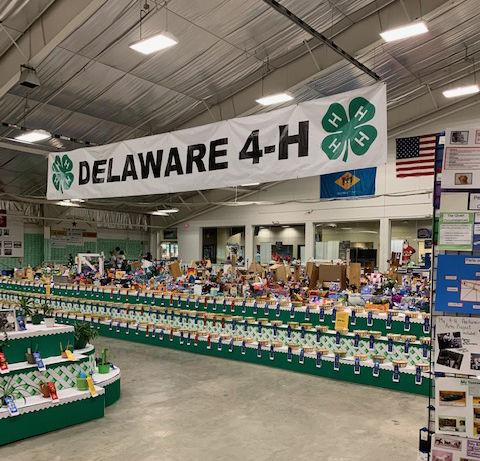 Delaware 4-H